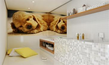 Perspectiva ilustrada do Pet Care