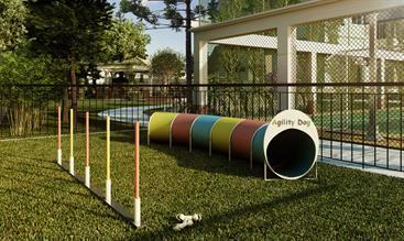 Perspectiva ilustrada do Agility Dog